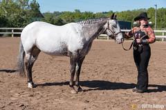 JBC_8118.jpg (Jim Babbage) Tags: krahc annualshow appaloosa horses