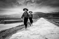 Time to go planting (Asian Hideaways Photography) Tags: water work women exterior ethnic people rice ricefield travel travelphotography sky vietnam paddy asia asian southeastasia streetphotography farmer rizière candid clouds vietnamese village blackandwhite bw naturallight nature natural monsoon
