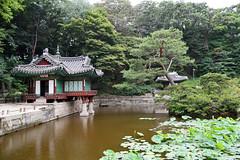"""Secret Garden"" in the Changdeokgung Palace, Seoul, South Korea (pontla) Tags: changdeokgungpalace seoul southkorea secretgarden royalpalace joseondynasty"