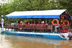 Nanamun Trip Kota Belud Sabah (MitchellC1014) Tags: nanamun kotabelud tourism firefly monkey rivercruise sunset mountkinabalu sabah canoneos newbie rampayan swamp