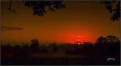 Bitesize Slices Of Sunrise. Part 8. (Picture post.) Tags: landscape nature green sunrise silhouettes sunburst fields mist summertime paysage arbre brume