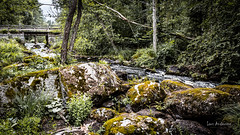 _61A4233.jpg (fotolasse) Tags: stenfors natur nature sweden sverige småland kronoberg å vatten water river bäck sten grönt green canon hdr 16x9 tingsryd
