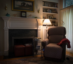 ODC - Leave the Light On (lclower19) Tags: odc light chair books lamp fireplace leavethelighton blanket