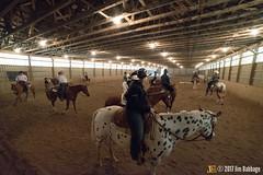 JBC_9080.jpg (Jim Babbage) Tags: krahc annualshow horse bethany horseshow
