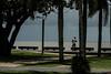 The Esplanade  Boardwalk---- IMG_4529_ (harry de haan, the cameraman) Tags: harrydehaan wetseason cairns fnq queensland australia summer clouds jasbond007 bench