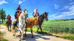 Trinité Walcourt 2017 (YᗩSᗰIᘉᗴ HᗴᘉS +6 000 000 thx❀) Tags: horses trinité walcourt 2017campagne tradition hensyasmine folklore belgique belgium 7dwf