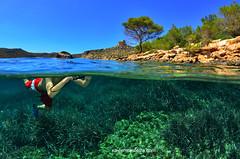 Dia mundial de los océanos, 8 de junio (Xavier Mas Ferrá) Tags: diamundialdelosocéanos pnmtac cabrera split pino posidonia niño underwater mediterráneo mediterraneansea costa