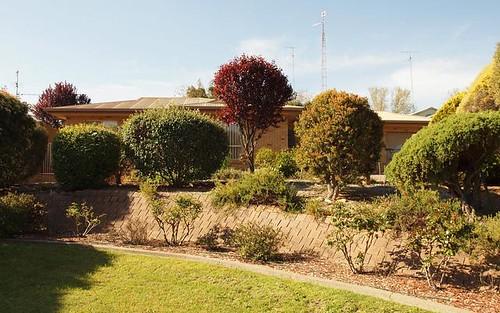 77 Melbourne Street, Narrandera NSW