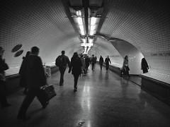 Rush Hour, Paris (cfalguiere) Tags: france commuter urban paris rushhour people heuredepointe cityscape subway datepub2017q307 personnes sel20170709 noiretblanc monochrom bw sel20170716