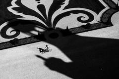 On peut toujours rêver (cactus2016) Tags: noiretblanc blackandwhite chambord ombres silhouettes absoluteblackandwhite