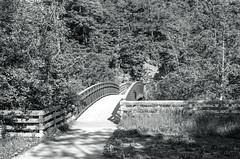 Glenorchy Bridge_ (Bill Smith1) Tags: believeinfilm billsmithsphotography fortepan100 halton heyfsc oakville olympusom1md rodinal150 zuiko50f18lens lifeinthe905