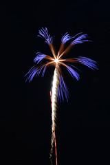 Koka Booth Fireworks Cary NC 4 (Jimbo1239) Tags: cary north carolina koka booth firework