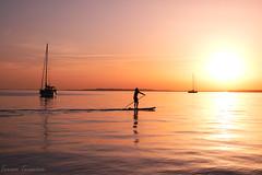 F4738 ~ Sunset of gold... (Teresa Teixeira) Tags: algarve culatra ilhadeculatra culatraisland summer holidays boat sunset gold sunsetofgold teresateixeira