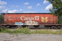 Tars (Psychedelic Wardad) Tags: freight graffiti aacrew aac aa tars