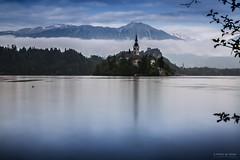 Panorama sul lago (Silver_63) Tags: lago bled slovenia water acqua