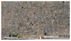 wall (Gert_D) Tags: wall varberg fästning