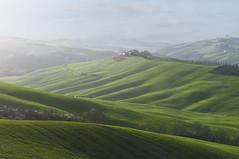 La campagna come un drappo verde - The countryside as a green drape (ricsen) Tags: italy toscana tuscany siena cretesenesi sangiovannidasso italia