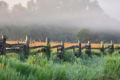 Foggy morning (Peter Granka) Tags: brontecreekprovincialpark opbrontecreek fog fence farm oakville brontecreekpp brontecreekpark provincialpark ontario halton