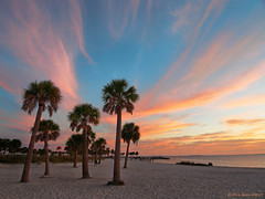 Southern Lights (OH_Snapper) Tags: olympus olympuspen pen penepl6 epl6 florida fl tarponsprings fredhowardpark beach sunset palms clouds colors sand outdoors evening southernview south gulfofmexico sea seascape landscape shoreline coastline coast shore palmtrees