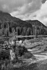 Flickr (8 of 10) (lieven.lema) Tags: dolomieten italia lievenlema moena ©2017