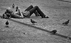 Good company (jefvandenhoute) Tags: france paris pompidou pigeons