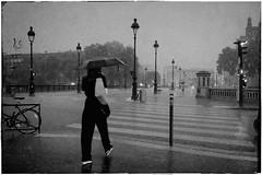 HOTEL DE VILLE PARIS street photography (Carlos Pinho Photography) Tags: paris street streetphotography rain rainyday umbrella canon canonfrance