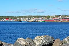 DSC07445 - Louisbourg Harbour