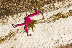 WHY OH WHY DID THE FLAMINGO CROSS THE ROAD? (akahawkeyefan) Tags: plastic flamingo street paint stripe weeds davemeyer chadron