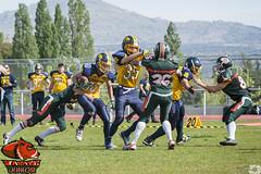 II Trofeo Ciudad de Tres Cantos Categoría Junior - Jabatos 12 - Alcorcón Smilodons 12