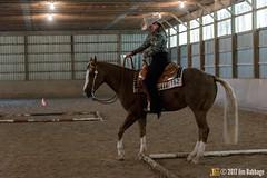 JBC_9052.jpg (Jim Babbage) Tags: krahc annualshow horse bethany horseshow