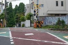 A42P0149lr (yoshitoshi ABe) Tags: 20170615 吉祥寺 井の頭公園 canon eos1dmarkiii ef70300mmf456isusm