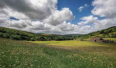 Dent Dale in Bloom... (johngregory250666) Tags: uk rural nature british countryside camera lens green yellow orange stone nikon nikkor hiking walking lines clouds sky blue moss lichen out brook glow grass imagesofengland amazing sunlight water light sun outdoor grassland field landscape hill trees plant serene moors ridge great national park mountain moor moorland dale new d5200 rock formation rays edge heather tor world pass outside cloud temperature view peak district long england north overcast path flickr bright yorkshire dales