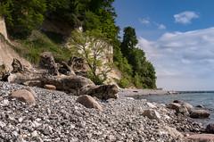 Rügen / Sassnitz (drummerwinger) Tags: rot rügen strand sassnitz ostsee wasser steine himmel wolken sonne baum kies canon700d sigma urlaub sommer