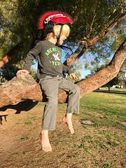 20170301_Shannon_phone_0002.jpg (Ryan and Shannon Gutenkunst) Tags: samhughesfamilynetwork carsongutenkunst treeclimbing himmelpark spikybikehelmet