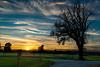 Sonnenuntergang Mostbrunnen HDR (1 von 1).jpg (Cugan) Tags: nikon d5300 hdr 3xp austria niederösterreich nö weinburg eck mostbrunnen sonnenuntergang sunset tree