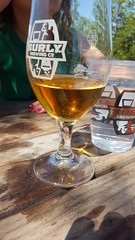 Surly (Mamluke) Tags: surly glass beer brewing brewery patio summer drink liquid amber table wood mamluke