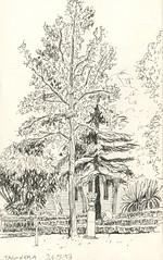 jardin de la taconera