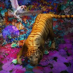 Predators (jaci XIII) Tags: predadores animais tigre coruja ave mampifero felino floresta surrealismo predators animal tiger owl bird feline forest surrealism