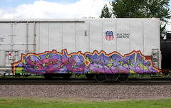 Stoe/Arek (quiet-silence) Tags: graffiti graff freight fr8 train railroad railcar art stoe stoer arek ba cdc armn reefer unionpacific armn170455