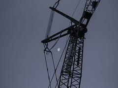 © Inge Hoogendoorn (ingehoogendoorn) Tags: moon maan crane hijskraan silhouet silhouette silhouettes silhouetten monochrome monochroom monochromatic grey bllue black halfmoon halvemaan earlymorning dark night nightphotography nightlight