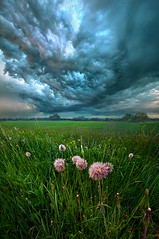 Forgive Us Our Trespasses (Phil~Koch) Tags: clouds travel journey life mood emotions country outdoors colors living heaven weather horizons sunrise lines landscape sun light field art meadow sky twilight horizon sunset wisconsin scenic vertical photography blue yellow green office portrait serene morning dawn nature natural earth environment inspired inspirational season beautiful peace hope love joy dramatic unity trending popular canon camera rural fineart arts shadow flowers grass shadows hike spring storm rain