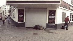 PART ONE --- at the bottom! (From The Streets Of Hamburg) Tags: fromthestreetsofhamburg stgeorg streetsleeping sleeping homeless bum penner obdachlos schlafenaufderstrasse strase streets street