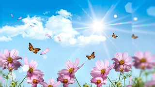 Floral Flowers in GOOGLE sharing for friends - Ritzie Galindez and Jesusa Queddeng