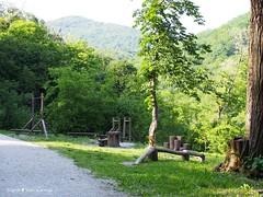 Miroslavac trail 4