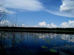 blue lake (elinapoisa) Tags: lake latgale latvia