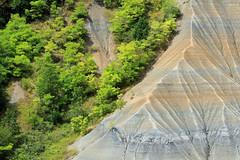 Le ravin de Corboeuf (Yvan LEMEUR) Tags: ravindecorboeuf erosion geology géologie argile marnes landscape extérieur paysage nature sauvage rosières hauteloire france ravinements arbres