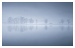 Buttermere Blue Hour (Vemsteroo) Tags: buttermere lakedistrict bluehour dawn sunrise trees nature canon 5d mkiii 100400mm circularpolariser mist fgog atmospheric beautiful still tranquil stillness beautyinnature lakes cumbria lake water