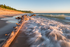 Sea Dragon (Aaron Springer) Tags: michigan northernmichigan lakemichigan thegreatlakes surf driftwood beach wave dune dragon sunlit outdoor nature landscape