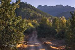 Blacks Gap (Jacqui Barker Photography) Tags: blacksgap moralanascenicdrive wilpenapound flindersranges southaustralia southaustraliaoutback southernhemisphere australia australianoutback australianlandscape australiandirttracks mountainrange cypresspinetrees morninglight