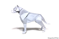 Dogo Argentino (18575) Tags: origami